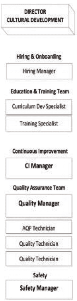 Figure 5 Under the new structure the director of cutural development manages several related areas: hiring and onboarding, education and training, continuous improvement, quality assurance, and safety.